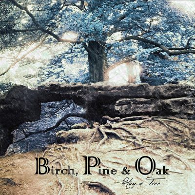 Birch, Pine & Oak – Hug a Tree