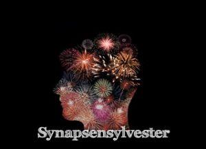 Synapsensilvester